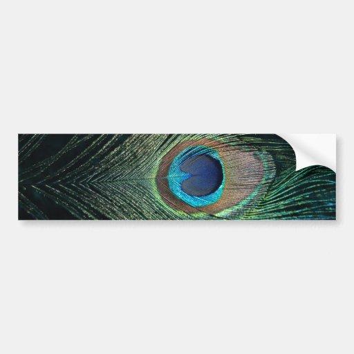 Dark Peacock Feather Bumper Sticker