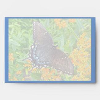 Dark Phase Tiger Swallowtail Birthday Envelope