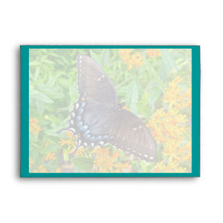 Dark Phase Tiger Swallowtail Butterfly Envelope