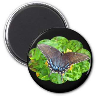 Dark Phase Tiger Swallowtail Butterfly Items 2 Inch Round Magnet