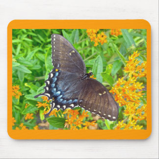 Dark Phase Tiger Swallowtail Butterfly Items Mouse Pad
