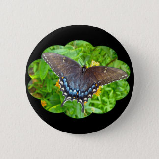 Dark Phase Tiger Swallowtail Butterfly Items Pinback Button