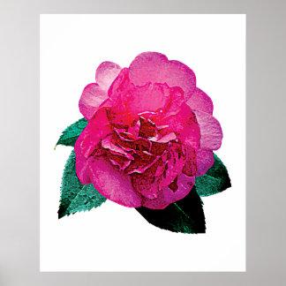 Dark Pink Camelia Dazzler Poster