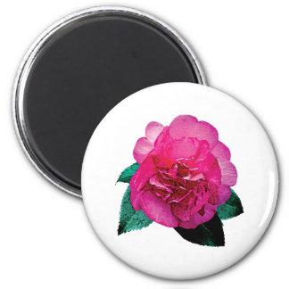 Dark Pink Camellia Dazzler Fridge Magnets