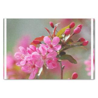 Dark Pink Cherry Blossoms Tissue Paper