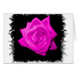 Dark pink colorized rose on a jagged black back greeting cards