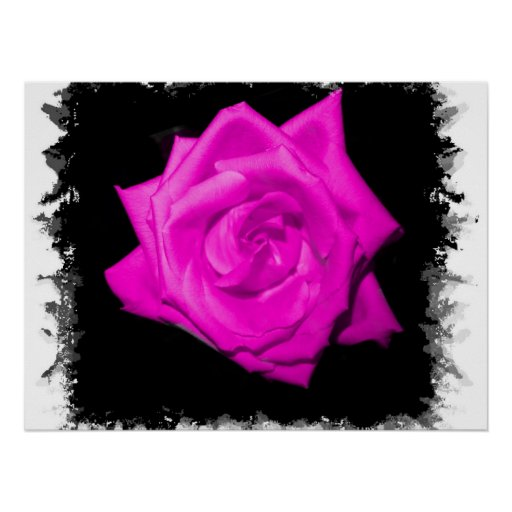 Dark pink colorized rose on a jagged black back poster