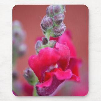 Dark Pink Magenta Red Snapdragon Flower Mouse Pad