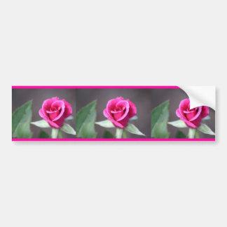 dark pink mini rose bumper sticker