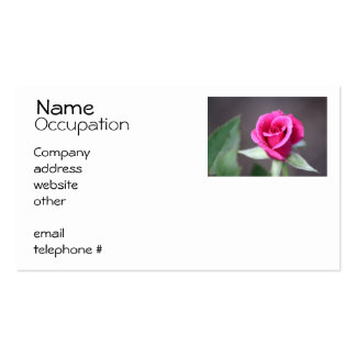 dark pink mini rose Double-Sided standard business cards (Pack of 100)