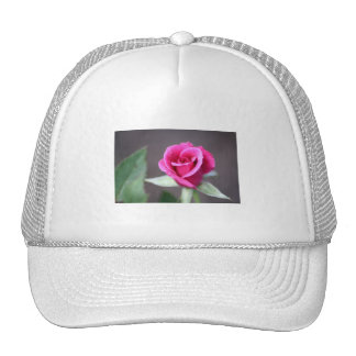 dark pink mini rose trucker hat