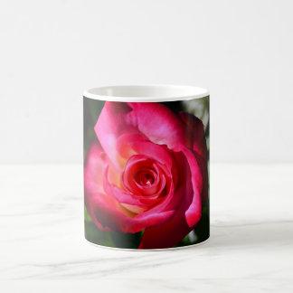 Dark Pink Rose Coffee Cup