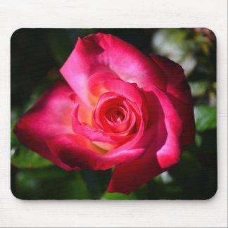 Dark Pink Rose Mouse Pad