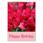 Dark Pink Roses Greeting Cards