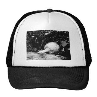 dark protector trucker hat