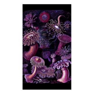 Dark Purple Anemones Business Card