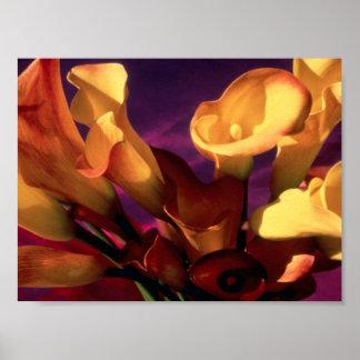 Dark Purple Calla Lilies Poster