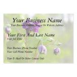 Dark Purple Columbine Large Business Cards (Pack Of 100)