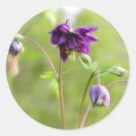Dark Purple Columbine Classic Round Sticker
