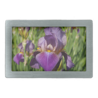 Dark Purple Lavender Iris Rectangular Belt Buckle