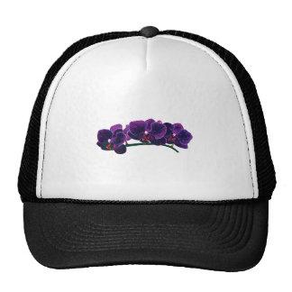 Dark Purple Phalaenopsis Orchids Hat