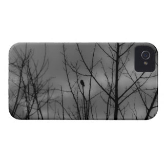 Dark Raven Case-Mate iPhone 4 Case