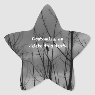 Dark Raven; Customizable Star Sticker