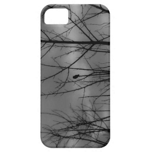 Dark Raven iPhone 5 Cover