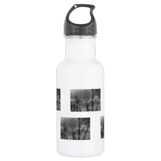 Dark Raven Stainless Steel Water Bottle