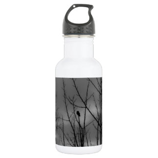 Dark Raven Water Bottle
