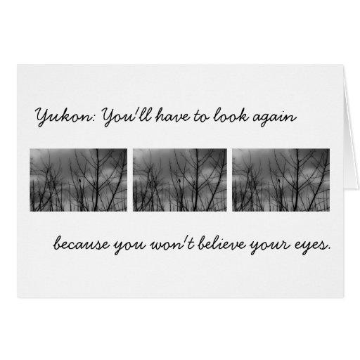 Dark Raven; Yukon Territory Souvenir Card
