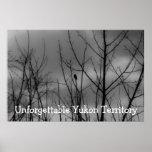 Dark Raven; Yukon Territory Souvenir Print