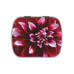 dark red dahlia jelly belly candy tins