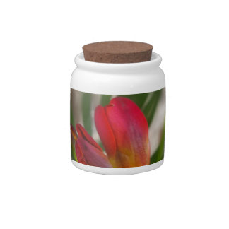 dark red freesia candy jar