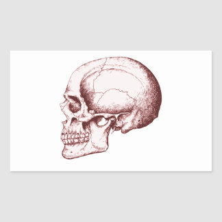 Dark Red Human Skull side Rectangular Sticker