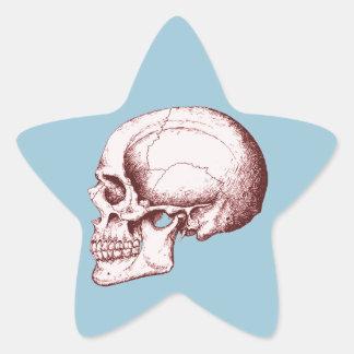 Dark Red Human Skull side Star Sticker