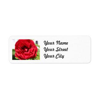 Dark red Rose Bardou Job Return Address Label