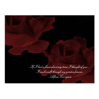 Dark Red Rose Postcard