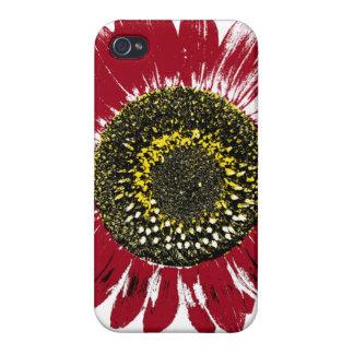 Dark Red Sunflower iPhone 4 Cases