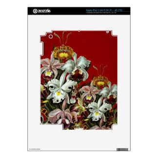Dark Red Vintage Flower Garden iPad 3 Skin