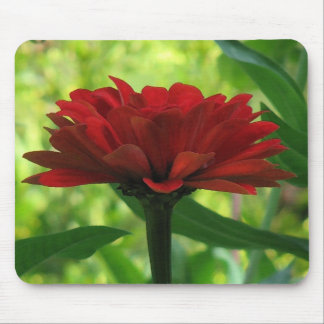 Dark Red Zinnia Mouse Pad
