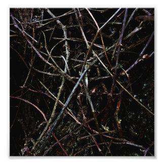 Dark Roots Texture Art Photo