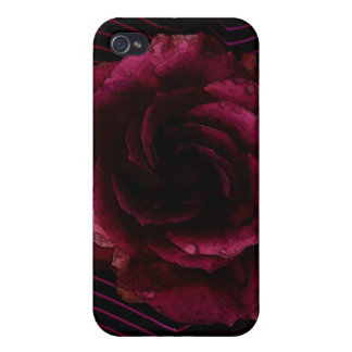 Dark Rose iPhone 4 Case