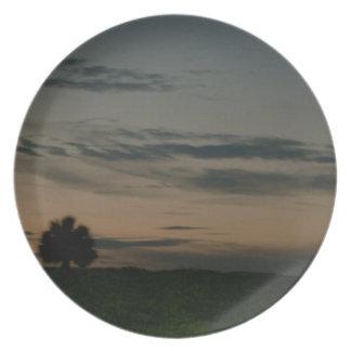 Dark Scene Melamine Plate