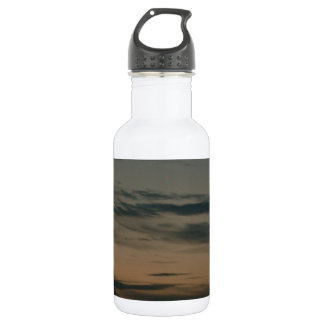 Dark Scene Stainless Steel Water Bottle
