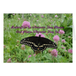 Dark Swallowtail Feeding On Clover Card