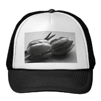Dark the Irish Trucker Hat