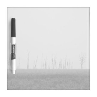 Dark Themed, A Black And White Picture Of Trees Wi Dry Erase Boards