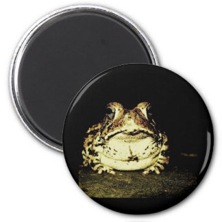 Dark Toad Magnet