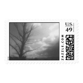Dark Tree Postage